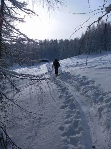 Foto: Wolfgang Lauschensky / Ski Tour / Wilde, 1719m -  über Wartegg / Wildalm / 14.02.2012 22:09:25