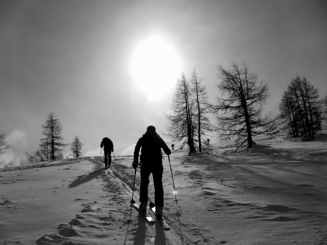 Foto: Wolfgang Lauschensky / Ski Tour / Wilde, 1719m -  über Wartegg / südwärts / 14.02.2012 22:08:48