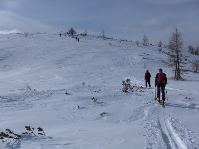 Foto: Wolfgang Lauschensky / Skitour / Wilde, 1719m -  über Wartegg / Gipfelkuppe / 14.02.2012 22:08:11