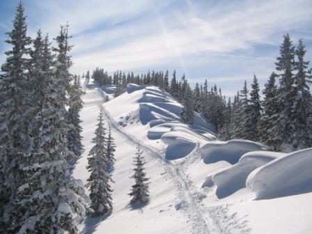 Foto: Karl Pacher / Ski Tour / Lahngangkogel, 1778m / vom Vorgipfel zum Lahngangkogel / 11.02.2013 08:53:04