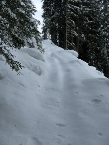 Foto: Wolfgang Lauschensky / Ski Tour / Pfoner Kreuzjöchl, 2640m / Abzweigung von der Rodelbahn / 12.02.2013 17:48:38
