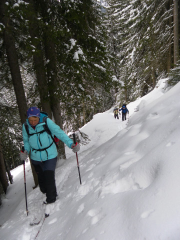 Foto: Wolfgang Lauschensky / Ski Tour / Pfoner Kreuzjöchl, 2640m / am steilen Waldpfad / 12.02.2013 17:48:29