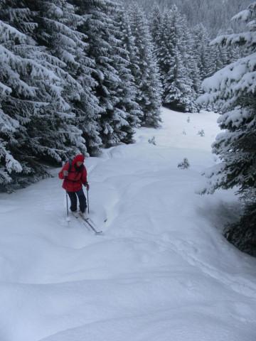 Foto: Wolfgang Lauschensky / Ski Tour / Pfoner Kreuzjöchl, 2640m / Waldschneisen / 12.02.2013 17:48:18