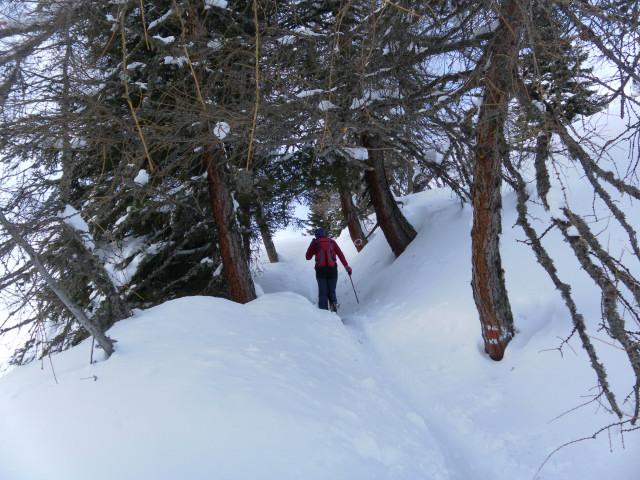 Foto: Wolfgang Lauschensky / Ski Tour / Pfoner Kreuzjöchl, 2640m / Sommerweg zum Wetterkreuz / 12.02.2013 17:47:38