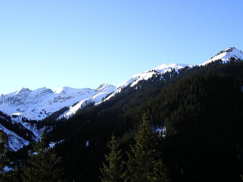 Foto: isi / Ski Tour / Galtjoch, 2109m / Das Galtjoch ist der kleine Doppelgipfel in der Sonne über dem Wald, gesehen von Rauth. / 10.01.2008 13:39:42