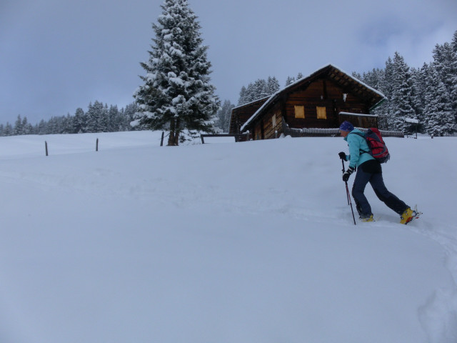 Foto: Wolfgang Lauschensky / Ski Tour / Baumgartgeier, 2392m, und Ronachgeier, 2236m / Mülleralm / 04.02.2014 20:36:50