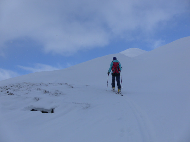 Foto: Wolfgang Lauschensky / Ski Tour / Baumgartgeier, 2392m, und Ronachgeier, 2236m / am Südrücken des Ronachgeiers / 04.02.2014 20:36:26