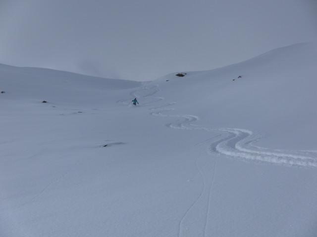 Foto: Wolfgang Lauschensky / Ski Tour / Baumgartgeier, 2392m, und Ronachgeier, 2236m / Ostmulden unter dem Verbindungsrücken / 04.02.2014 20:35:13