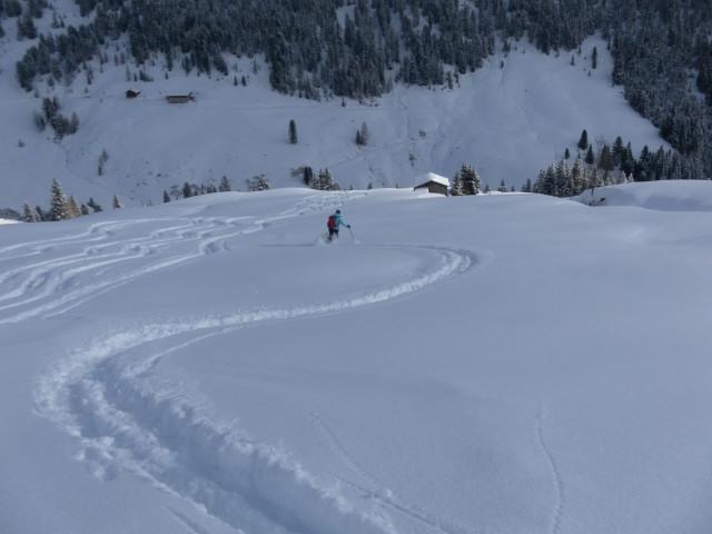 Foto: Wolfgang Lauschensky / Ski Tour / Baumgartgeier, 2392m, und Ronachgeier, 2236m / hinab zur Putzalm / 04.02.2014 20:35:05