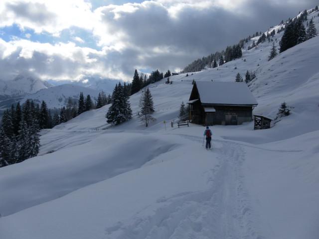 Foto: Wolfgang Lauschensky / Ski Tour / Baumgartgeier, 2392m, und Ronachgeier, 2236m / Güterweg von der Putzalm zum Ronachwirt / 04.02.2014 20:34:54