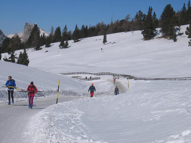 Foto: Andreas Koller / Ski Tour / Dürrenstein, 2839m - von Außerprags / 24.12.2008 13:54:25