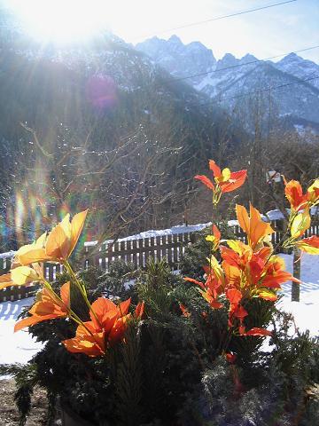 Foto: Andreas Koller / Ski Tour / Dürrenstein, 2839m - von Außerprags / 24.12.2008 13:49:02