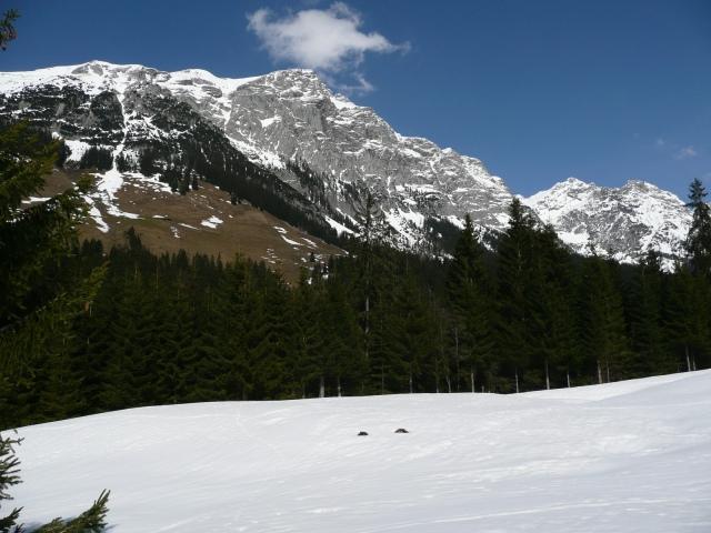 Foto: Manfred Karl / Skitour / Seehorn, 2320m / Kammerlinghorn / 27.01.2009 22:09:52