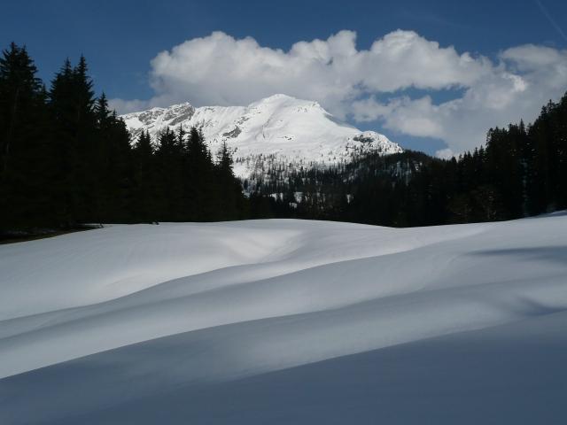 Foto: Manfred Karl / Skitour / Seehorn, 2320m / 27.01.2009 22:09:29