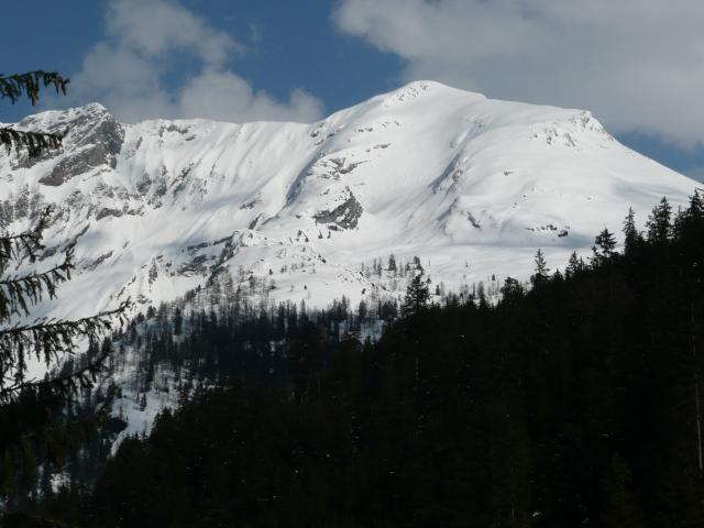 Foto: Manfred Karl / Skitour / Seehorn, 2320m / Seehorn / 27.01.2009 22:09:09