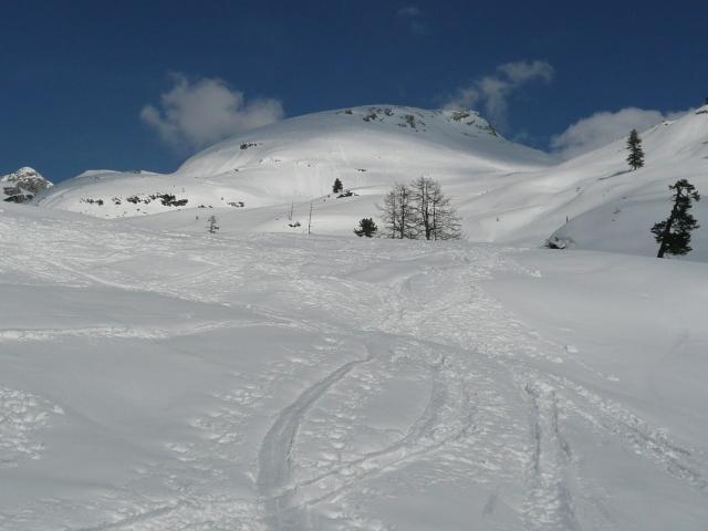 Foto: Manfred Karl / Skitour / Seehorn, 2320m / Die schönen Schihänge aufs Seehorn / 27.01.2009 22:06:42