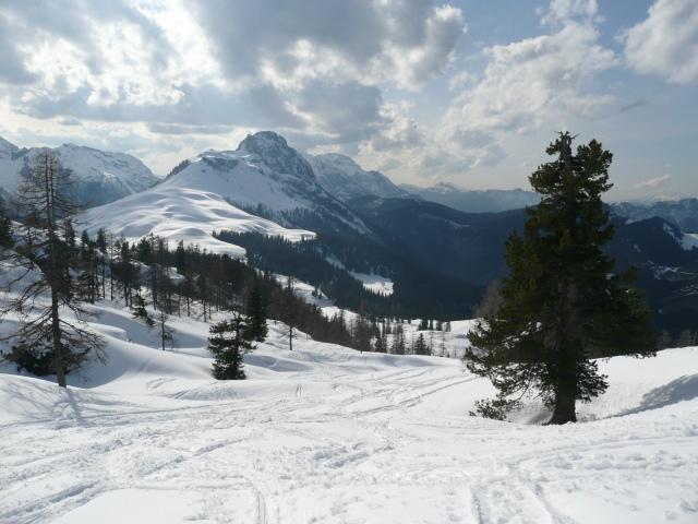 Foto: Manfred Karl / Skitour / Seehorn, 2320m / Im Mittelteil des Anstieges zum Seehorn / 27.01.2009 22:06:19