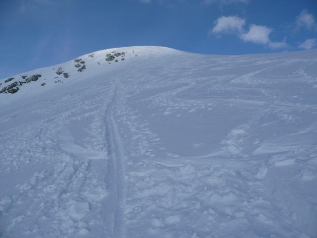 Foto: Manfred Karl / Skitour / Seehorn, 2320m / 27.01.2009 22:00:35