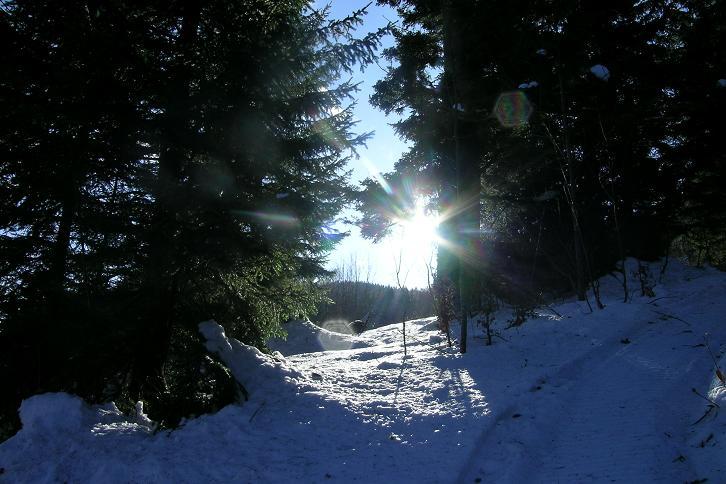 Foto: Andreas Koller / Ski Tour / Tirolerkogel, 1377m / 15.12.2008 00:40:08