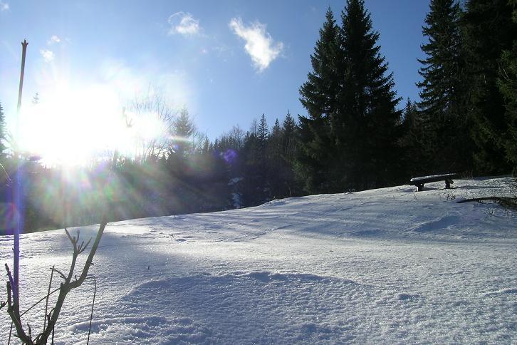 Foto: Andreas Koller / Ski Tour / Tirolerkogel, 1377m / 15.12.2008 00:39:54