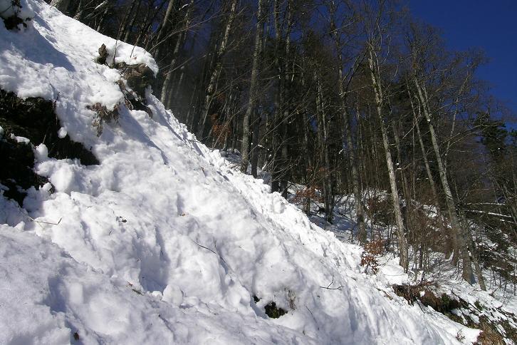 Foto: Andreas Koller / Ski Tour / Tirolerkogel, 1377m / 15.12.2008 00:38:43
