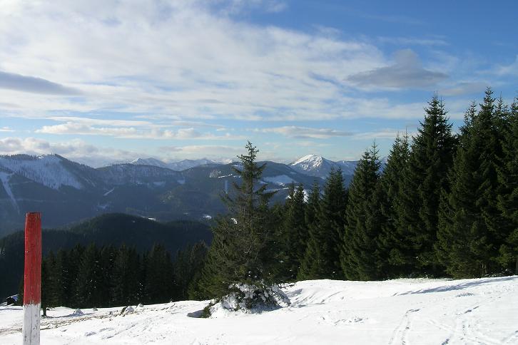 Foto: Andreas Koller / Ski Tour / Tirolerkogel, 1377m / 15.12.2008 00:37:45