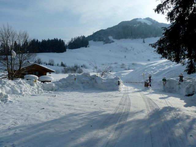 Foto: Thomas Höllwarth / Ski Tour / Brandberger Seespitze (2390m) / 04.02.2012 15:54:31