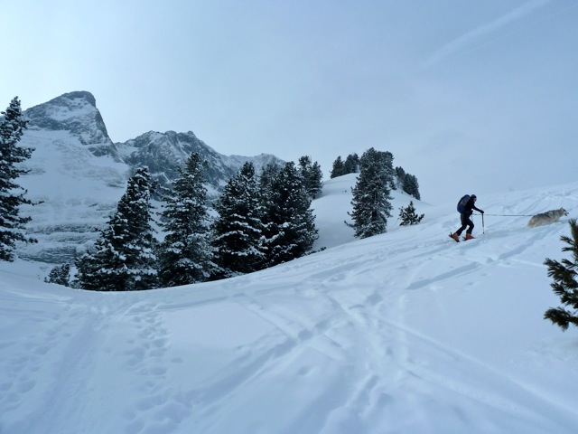 Foto: Thomas Höllwarth / Skitour / Brandberger Seespitze (2390m) / 04.02.2012 15:53:01
