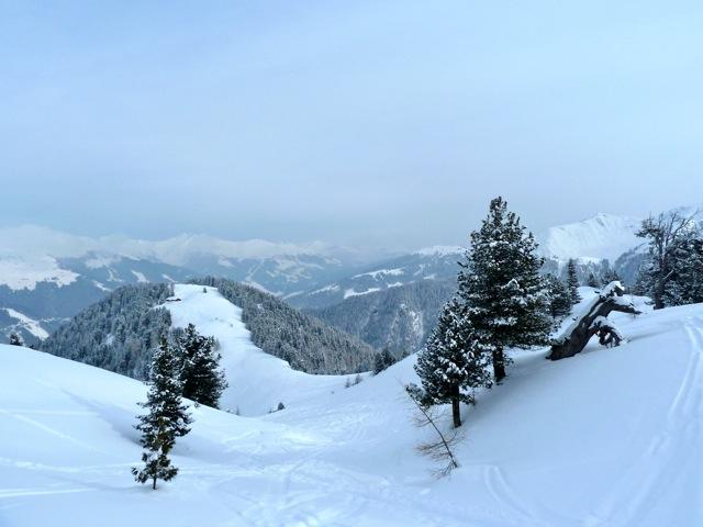 Foto: Thomas Höllwarth / Ski Tour / Brandberger Seespitze (2390m) / 04.02.2012 15:52:55