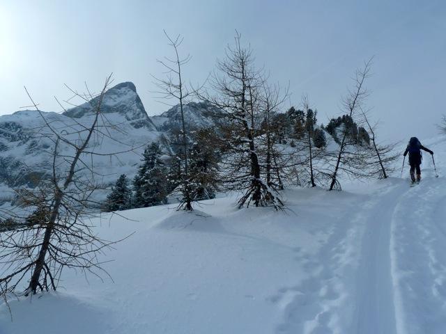 Foto: Thomas Höllwarth / Ski Tour / Brandberger Seespitze (2390m) / 04.02.2012 15:52:40
