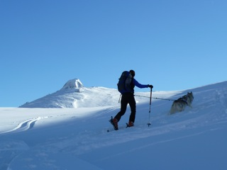 Foto: Thomas Höllwarth / Ski Tour / Hochfeld, 2350m / 19.01.2012 15:12:51