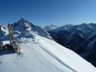 Foto: Thomas Höllwarth / Ski Tour / Hochfeld, 2350m / 19.01.2012 15:13:06