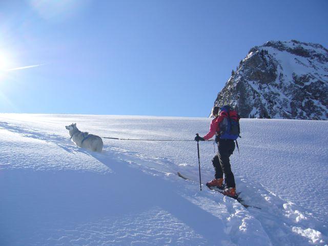 Foto: Thomas Höllwarth / Skitour / Torhelm (2452m) - über das Heimjoch / Auch den Hund freuts / 26.02.2009 21:34:32