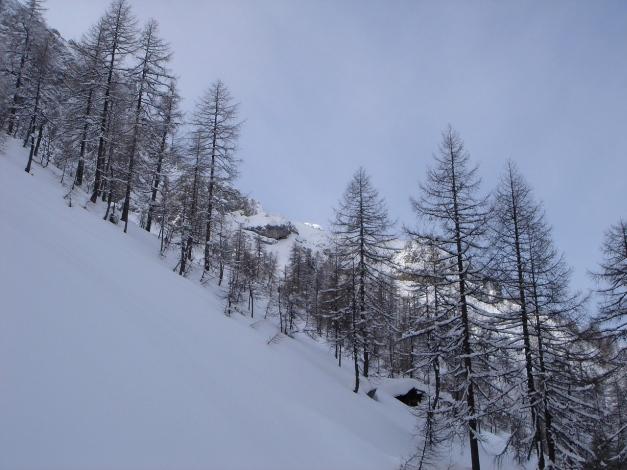 Foto: Manfred Karl / Ski Tour / Taferlnock / Im unteren Teil des Kares / 27.01.2009 06:22:29