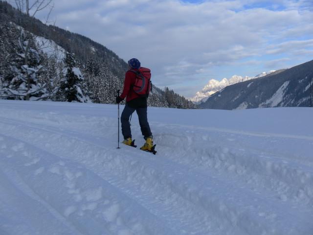 Foto: Wolfgang Lauschensky / Ski Tour / Wasserfallspitze, 2507m  / Forstweg mit Dachsteinblick / 01.02.2012 17:57:24