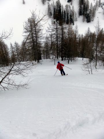 Foto: Wolfgang Lauschensky / Ski Tour / Wasserfallspitze, 2507m  / im Steilwald über der Herzmaieralm / 01.02.2012 17:54:09