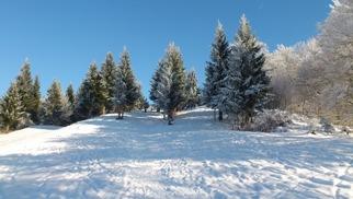 Foto: Ulrike Hölzl / Ski Tour / Rauchenbühel - Gaisberg / Ein sensationeller Tag!!! / 27.01.2013 11:14:27