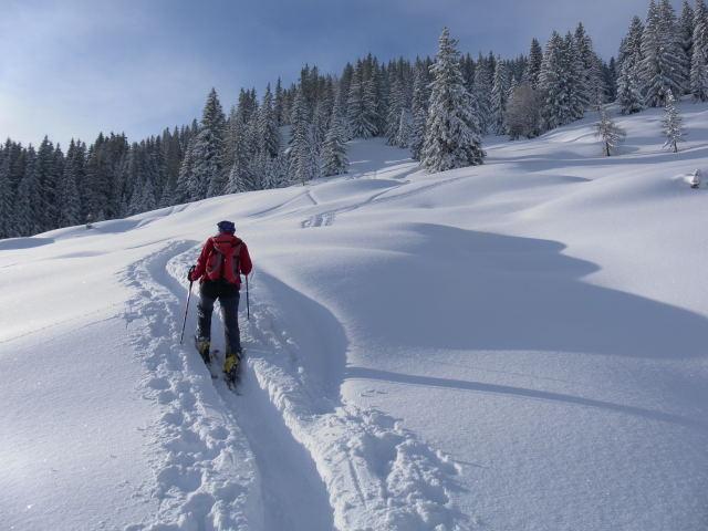 Foto: Wolfgang Lauschensky / Ski Tour / Grinnköpfl (1707m) / kupierte Flachhänge / 18.12.2011 20:57:59