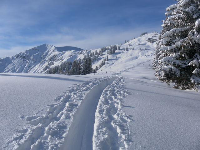 Foto: Wolfgang Lauschensky / Ski Tour / Grinnköpfl (1707m) / Klingspitz und Marbachhöhe / 18.12.2011 20:57:46