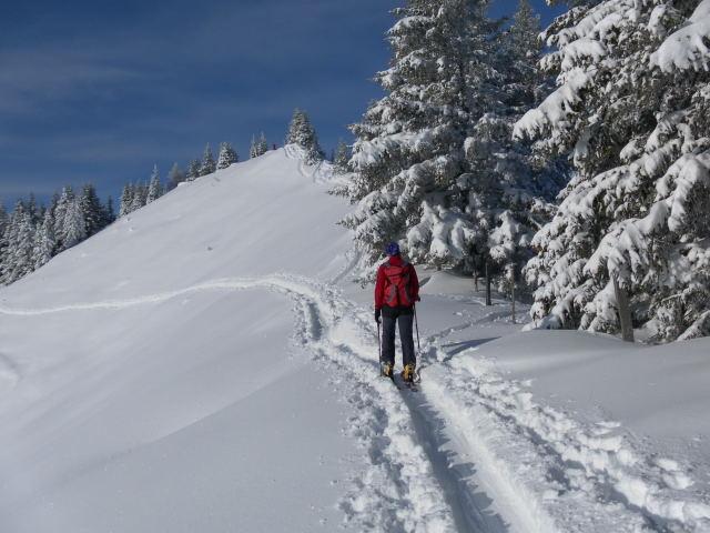 Foto: Wolfgang Lauschensky / Ski Tour / Grinnköpfl (1707m) / Grinnköpfl / 18.12.2011 20:57:26