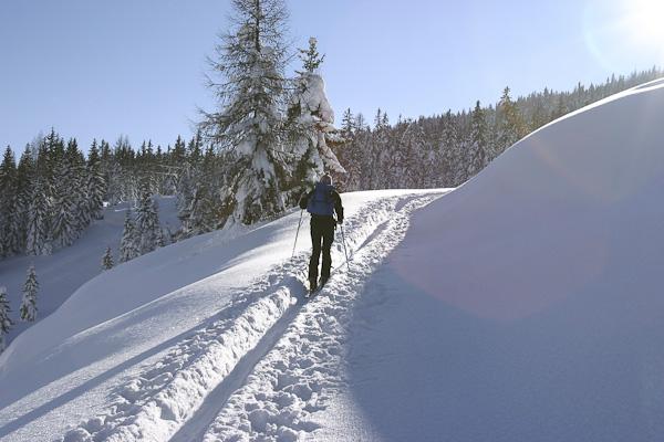 Foto: Christian Schickmayr / Ski Tour / Schneebergkreuz, 1938m / Abmarsch beim Dientener Sattel / 22.03.2011 11:22:11