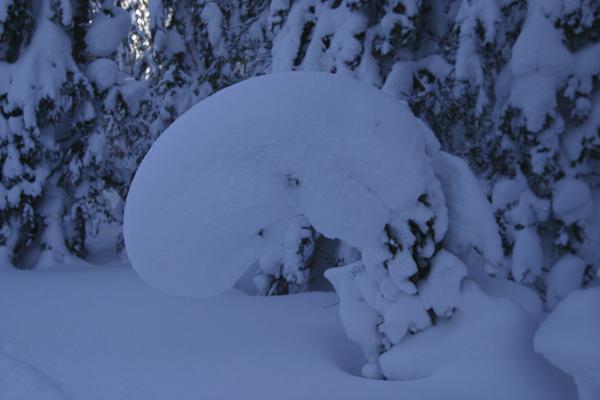 Foto: Christian Schickmayr / Ski Tour / Schneebergkreuz, 1938m / 22.03.2011 11:21:53