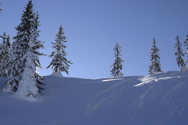 Foto: Christian Schickmayr / Ski Tour / Schneebergkreuz, 1938m / 22.03.2011 11:21:37