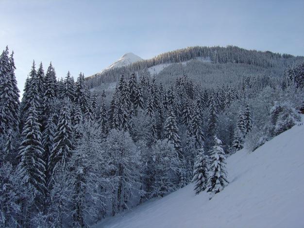 Foto: Manfred Karl / Skitour / Lackenkogel, 2051 m / Erster Blick auf den Lackenkogel / 21.12.2008 20:16:29
