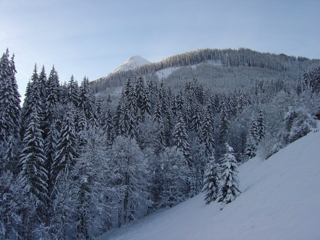 Foto: Manfred Karl / Ski Tour / Lackenkogel, 2051 m / Erster Blick auf den Lackenkogel / 21.12.2008 20:16:29