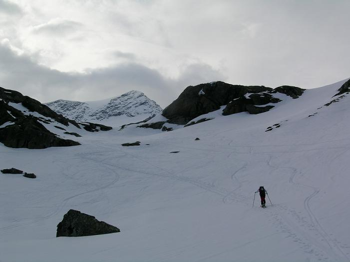 Foto: Andreas Koller / Ski Tour / Vom Enzingerboden auf den Hocheiser, 3206m / 29.01.2009 19:56:48