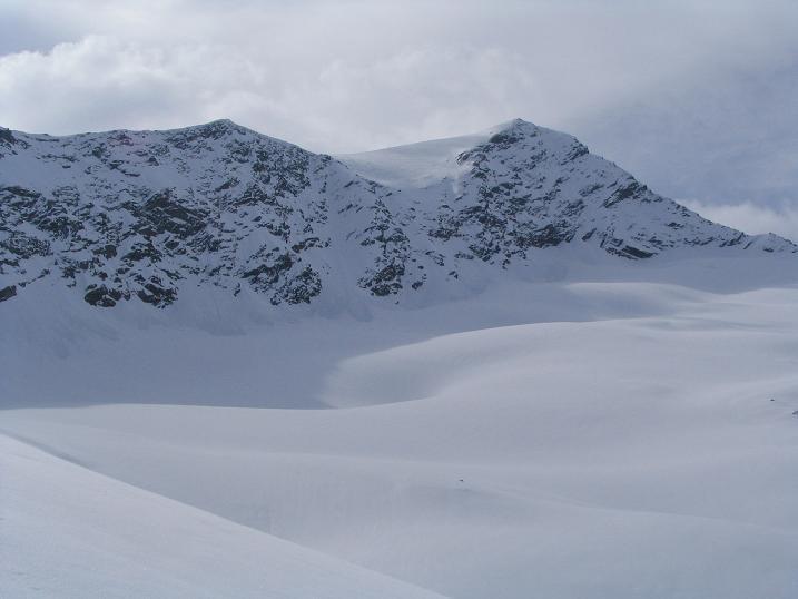 Foto: Andreas Koller / Ski Tour / Vom Enzingerboden auf den Hocheiser, 3206m / 29.01.2009 19:55:42