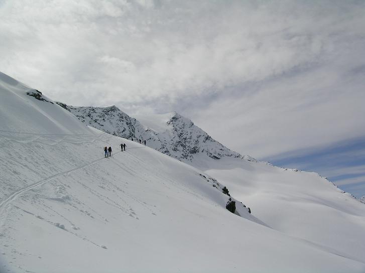 Foto: Andreas Koller / Ski Tour / Vom Enzingerboden auf den Hocheiser, 3206m / 29.01.2009 19:55:29