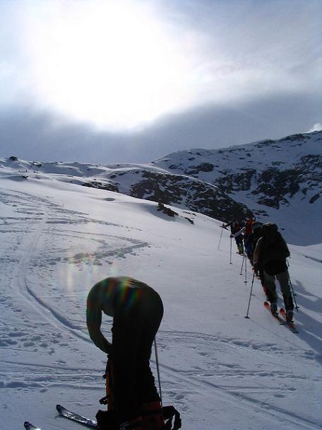 Foto: Andreas Koller / Ski Tour / Vom Enzingerboden auf den Hocheiser, 3206m / 29.01.2009 19:55:20