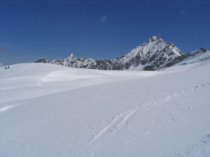 Foto: Andreas Koller / Ski Tour / Vom Enzingerboden auf den Hocheiser, 3206m / 29.01.2009 19:54:34